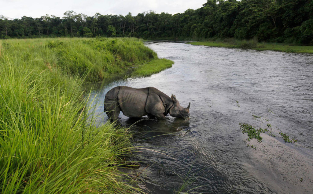Chitwan Adventure Tour