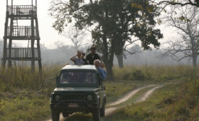 jeep-safari-chitwan