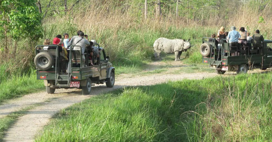 Chitwan National Park Jeep Safari